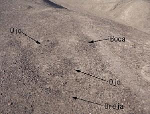nazca-022011-1