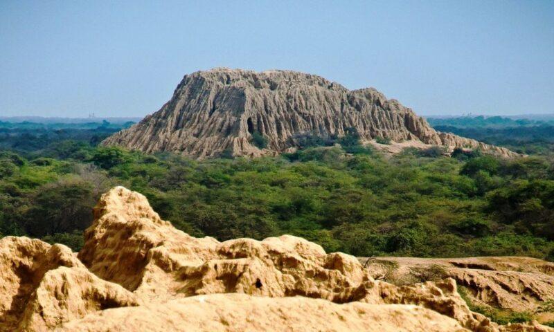 Construirán defensa ribereña para proteger Bosque de Pómac en Lambayeque