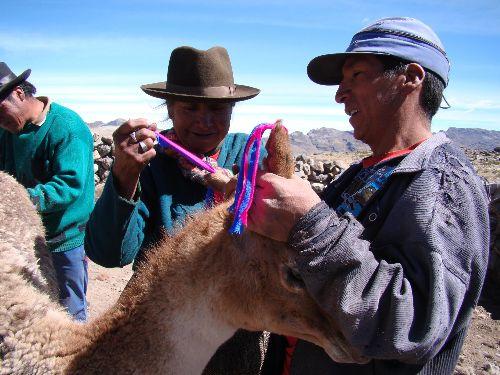 Organizan ciclo de documentales sobre el Camino Inca