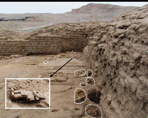 Hallazgos de Canis familiaris en el santuario de Pachacamac, Lima, Perú