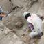 sitio-arqueologico-monterrey-lima-2013-4