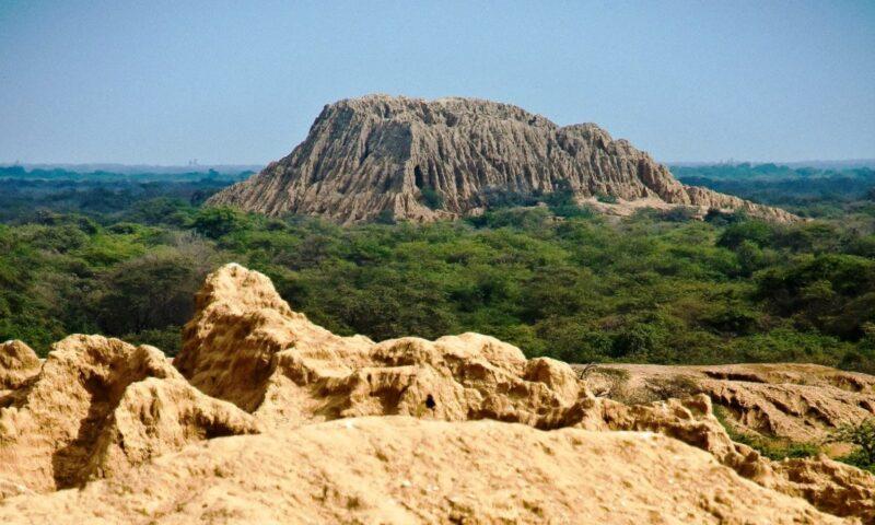 Bosque de Pómac: naturaleza y cultura a una hora de Chiclayo