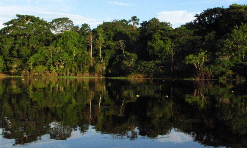 USA Today: Peru's Pacaya Samiria one of 10 Best Reader's Choice for Wildlife