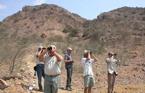 turistas-peru-avistamiento-aves