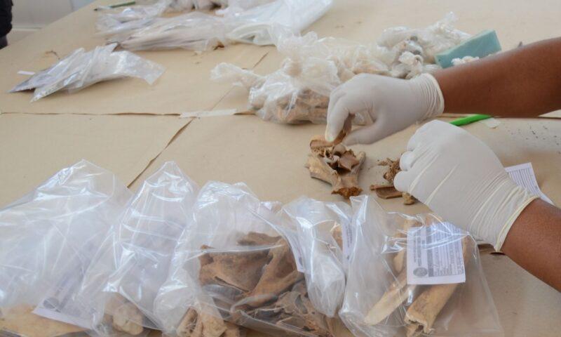 Catalogan 70,000 piezas recuperadas en últimos años en Lambayeque
