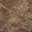 lineas-de-nasca-colibri