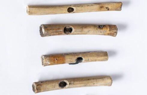 vichama-flauta-traversa-2