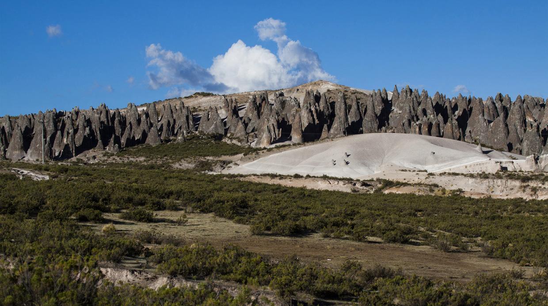 pampachari-bosque-piedras-apurimac-1