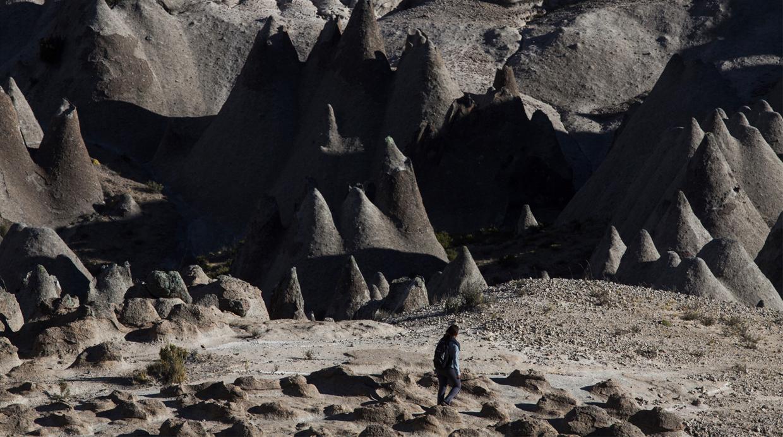 pampachari-bosque-piedras-apurimac-2