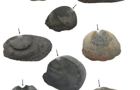 huaca-prieta-hallazgo-15000-anos-mayo-2017-1
